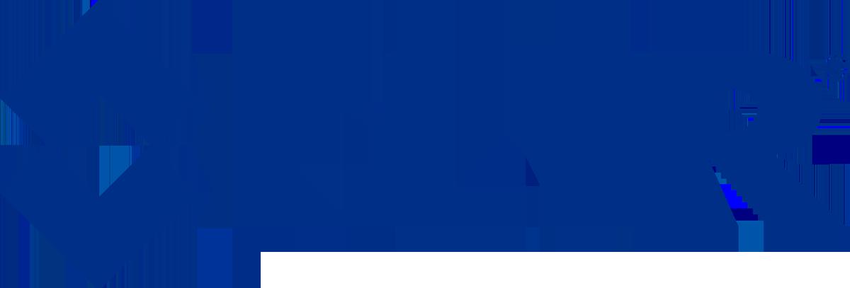 M300-Serie Tagsicht-/Wärmebildkamera von FLIR